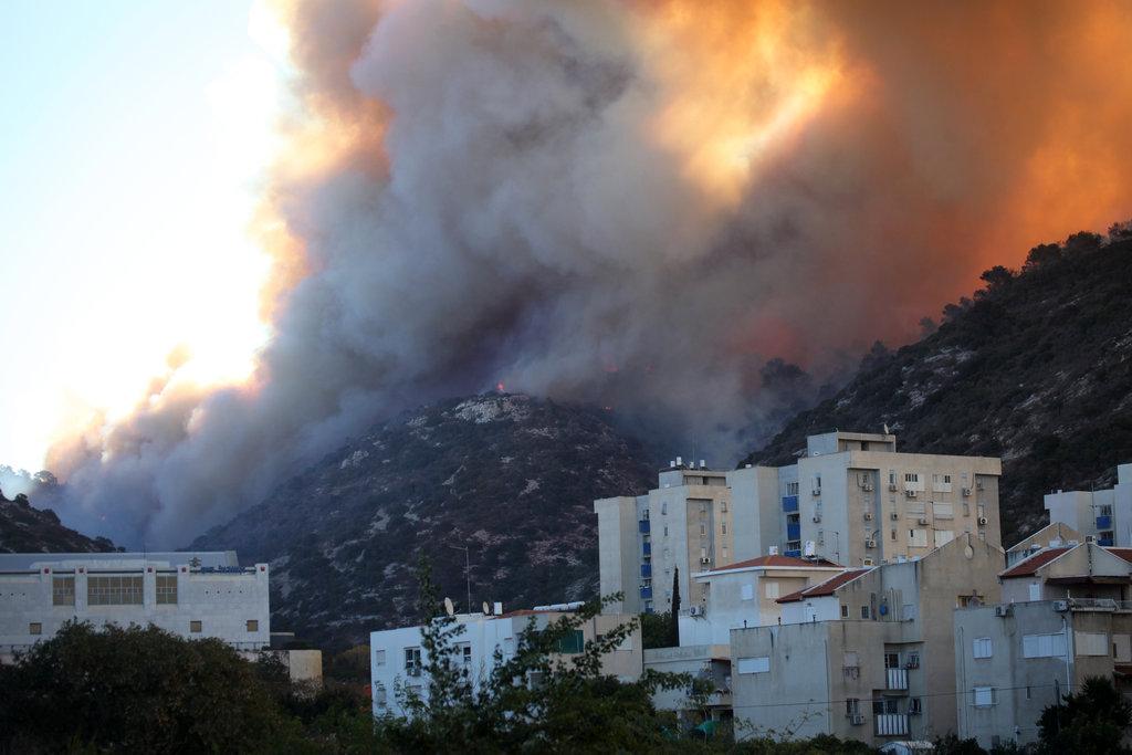 kebakaran-hutan-israel