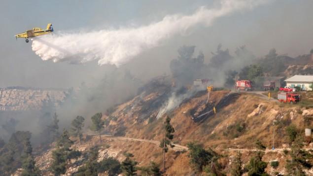 kebakaran-hutan-israel2
