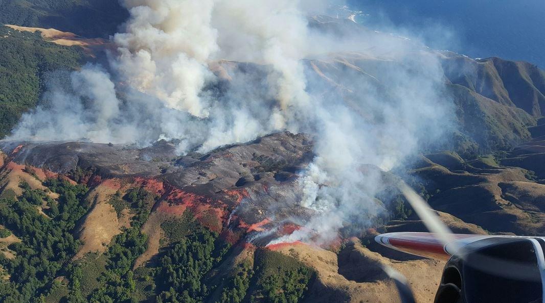 kebakaran-hutan-israel3